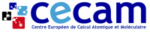 E-CAM in the organizing committee of CECAM workshop on Quantum Computing and HPC