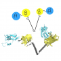 """New publication is out: """"Unimolecular FRET Sensors: Simple Linker Designs and Properties"""""""