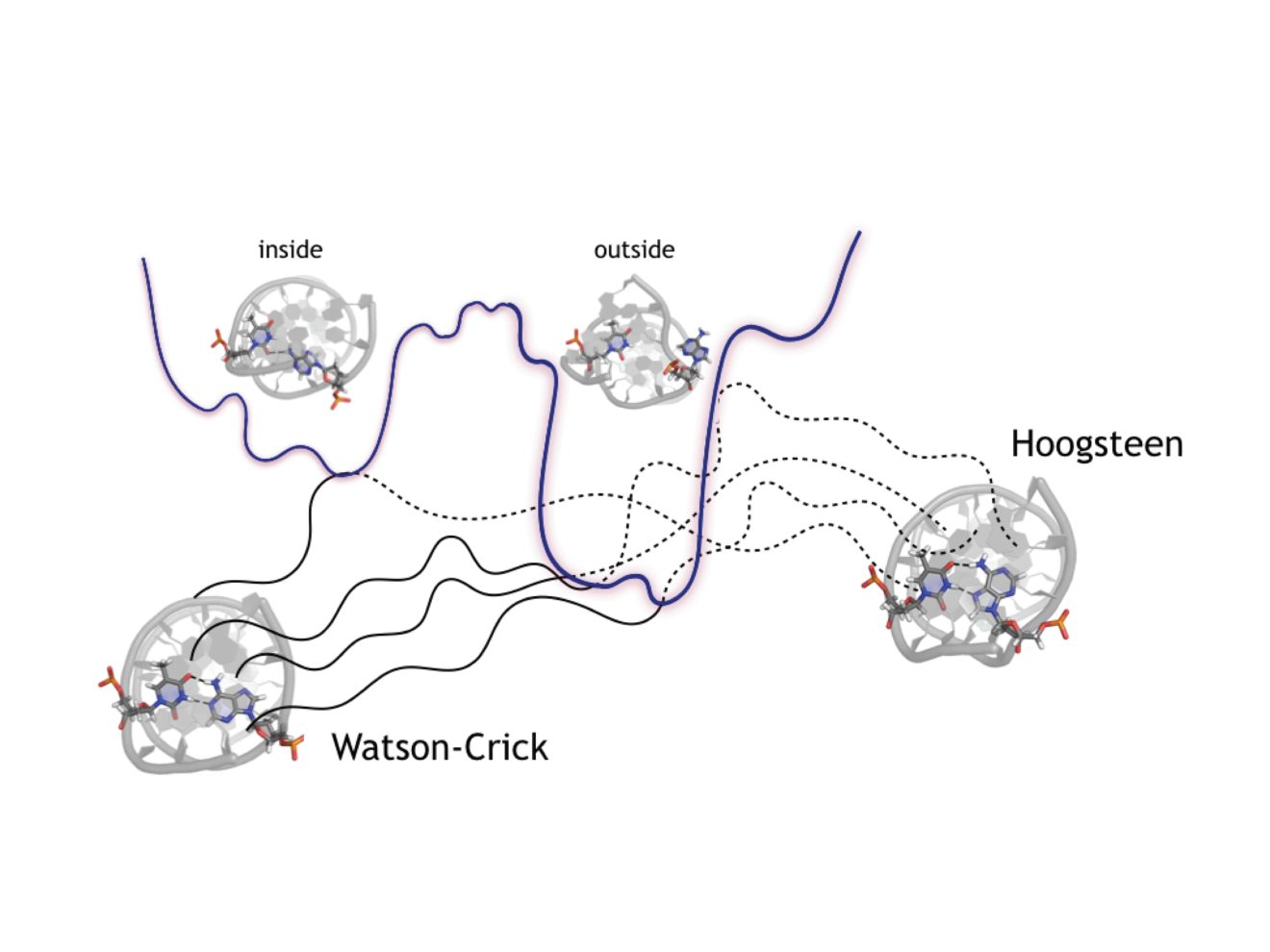 Nucleic Acids Research, 2019, Vol. 47, No. 21 11069–11076, Oxford University Press